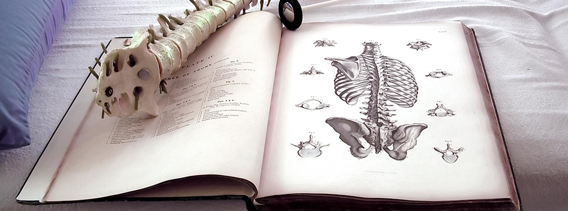 La chiropratica: Intervista al Dr. Antonio Gil