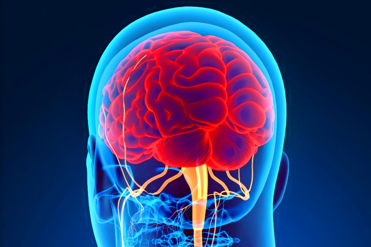Aggiustamento chiropratico sul sistema nervoso